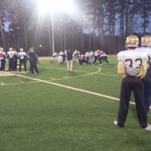 Wolves and Golden Lions Have A Date In The Dome